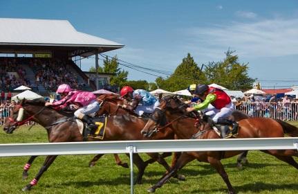 Hawkes Bay Racing