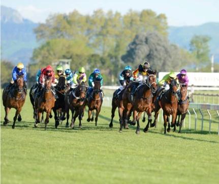 Interislander Summer Festival New Year's Day Races