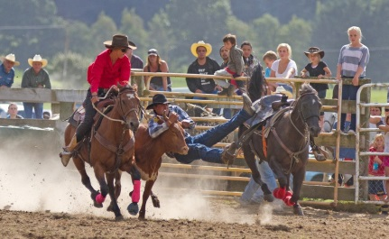 Uppper Mohaka Rodeo
