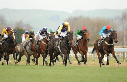 Hawkes Bay Races