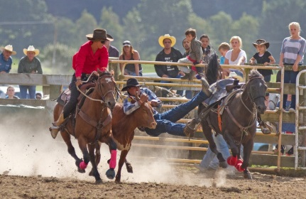 Upper Mohaka Rodeo
